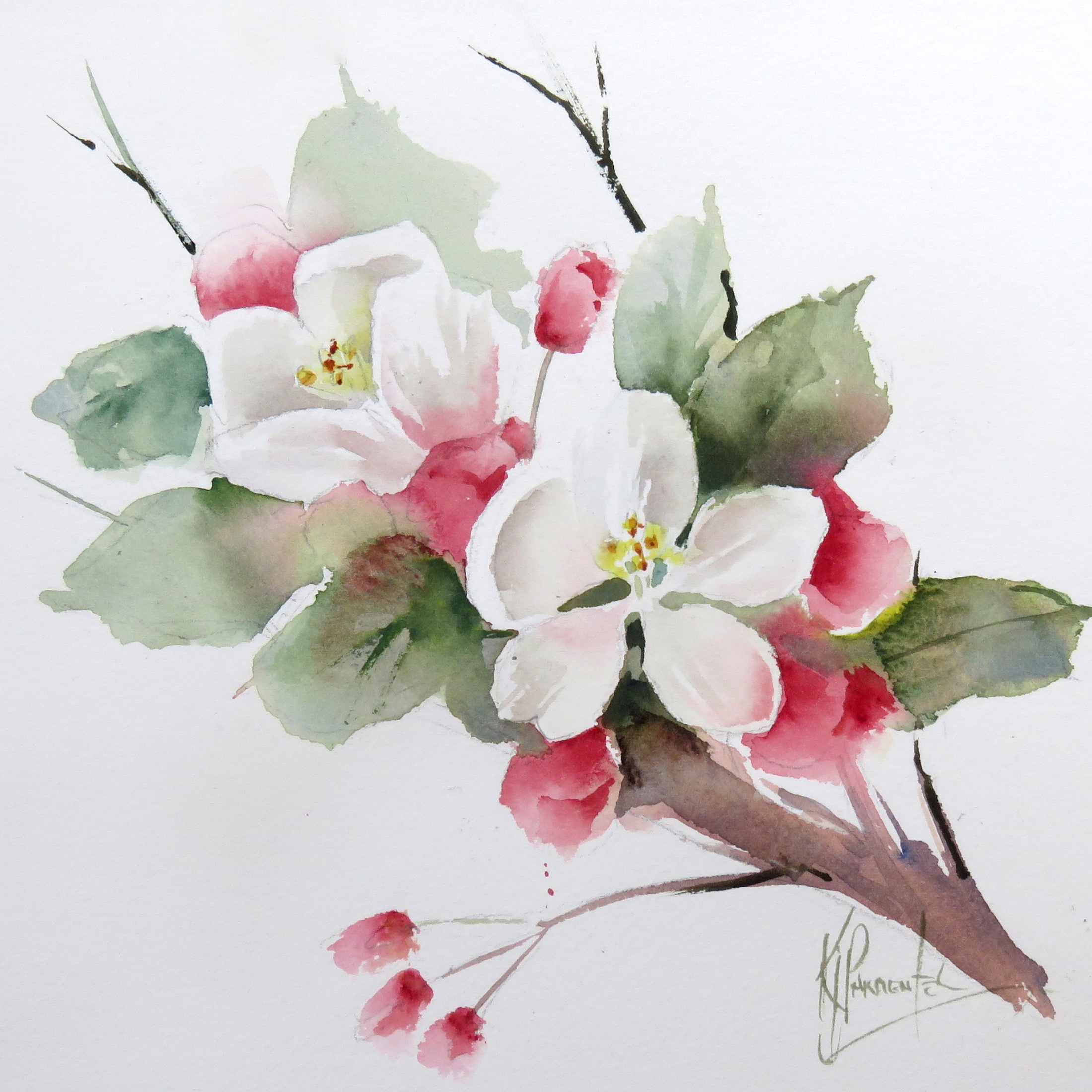 Apple Blossom – online tuition