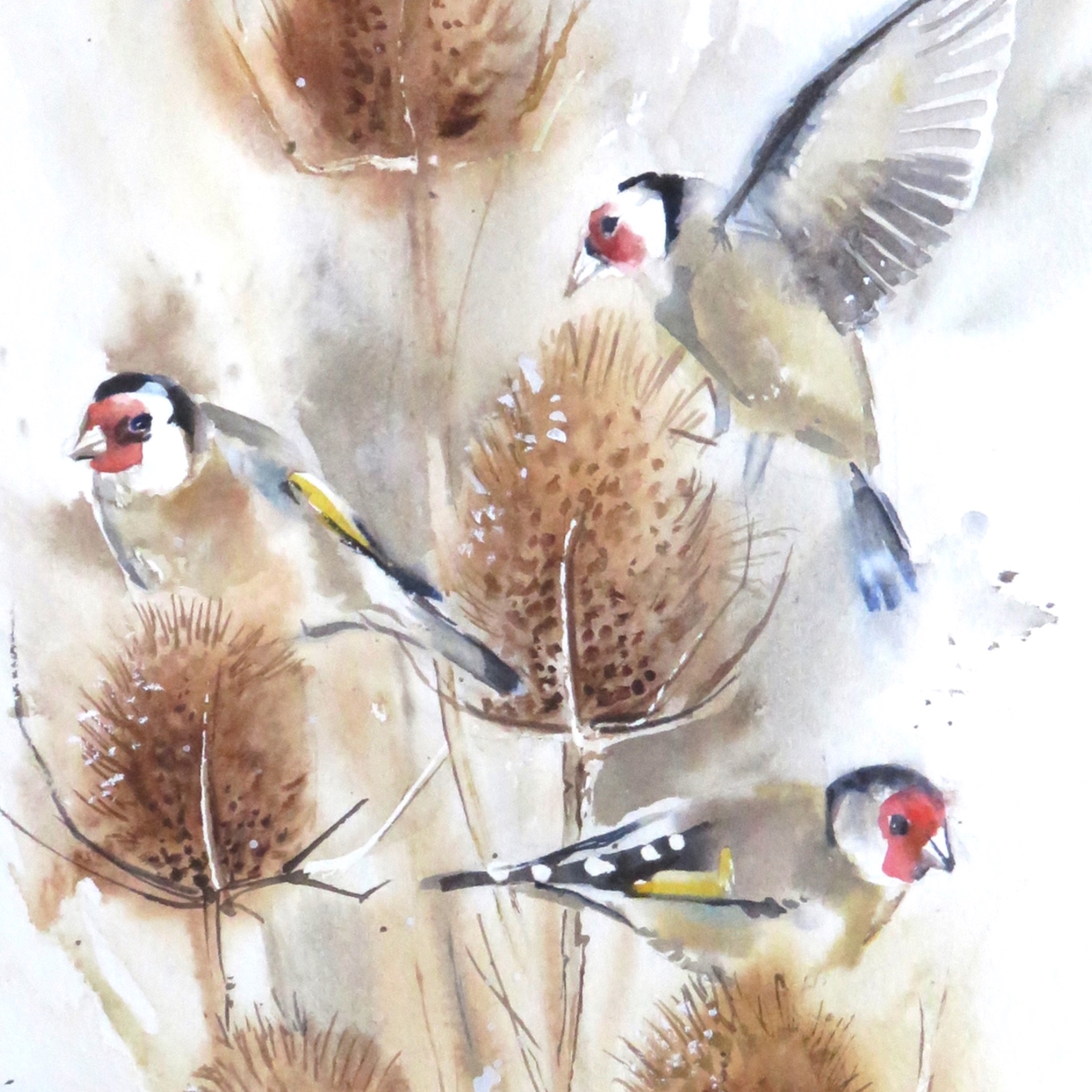 Charmed – Goldfinch