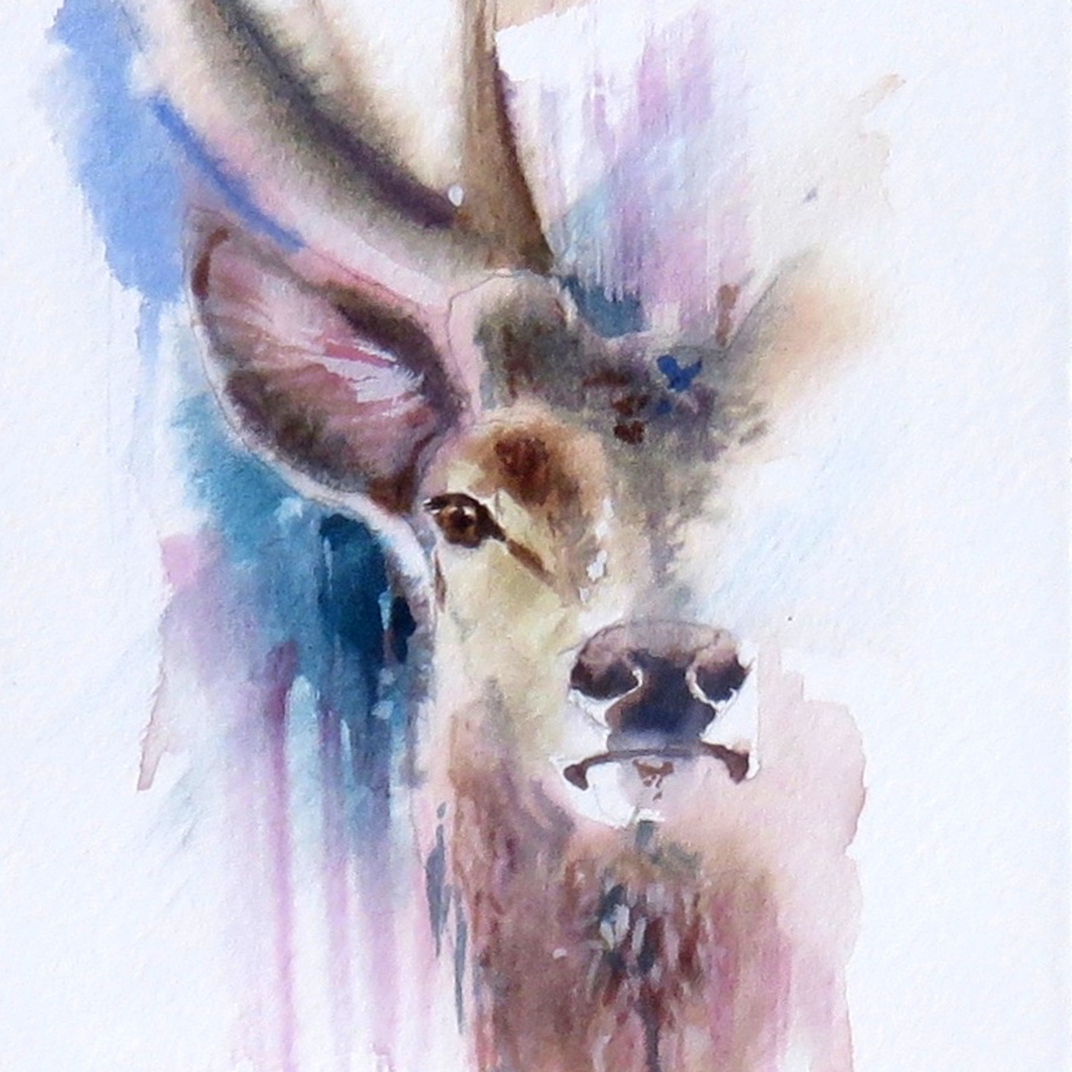 Painted Card – Mr Stag (Sold)
