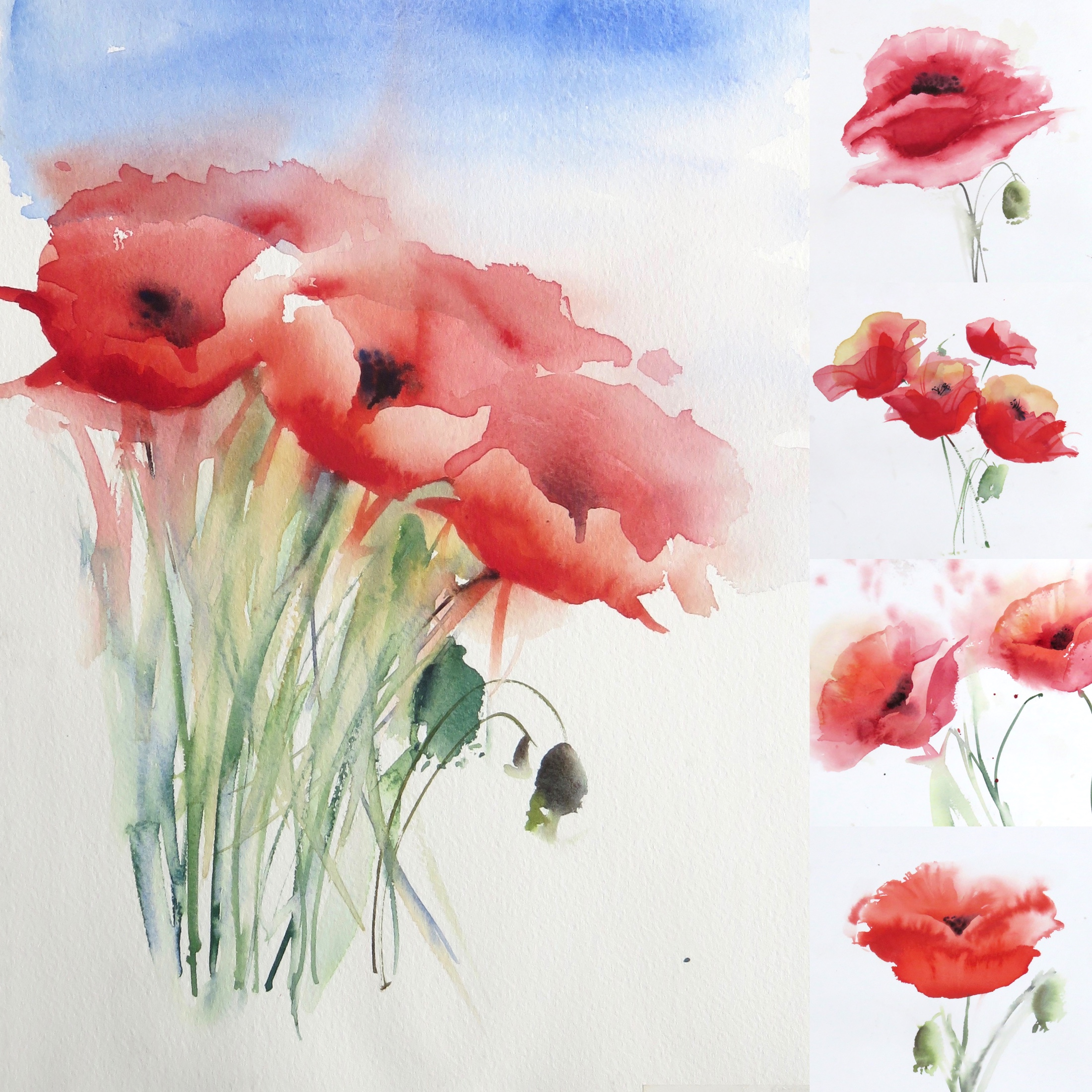 Five fabulous poppies – online tuition