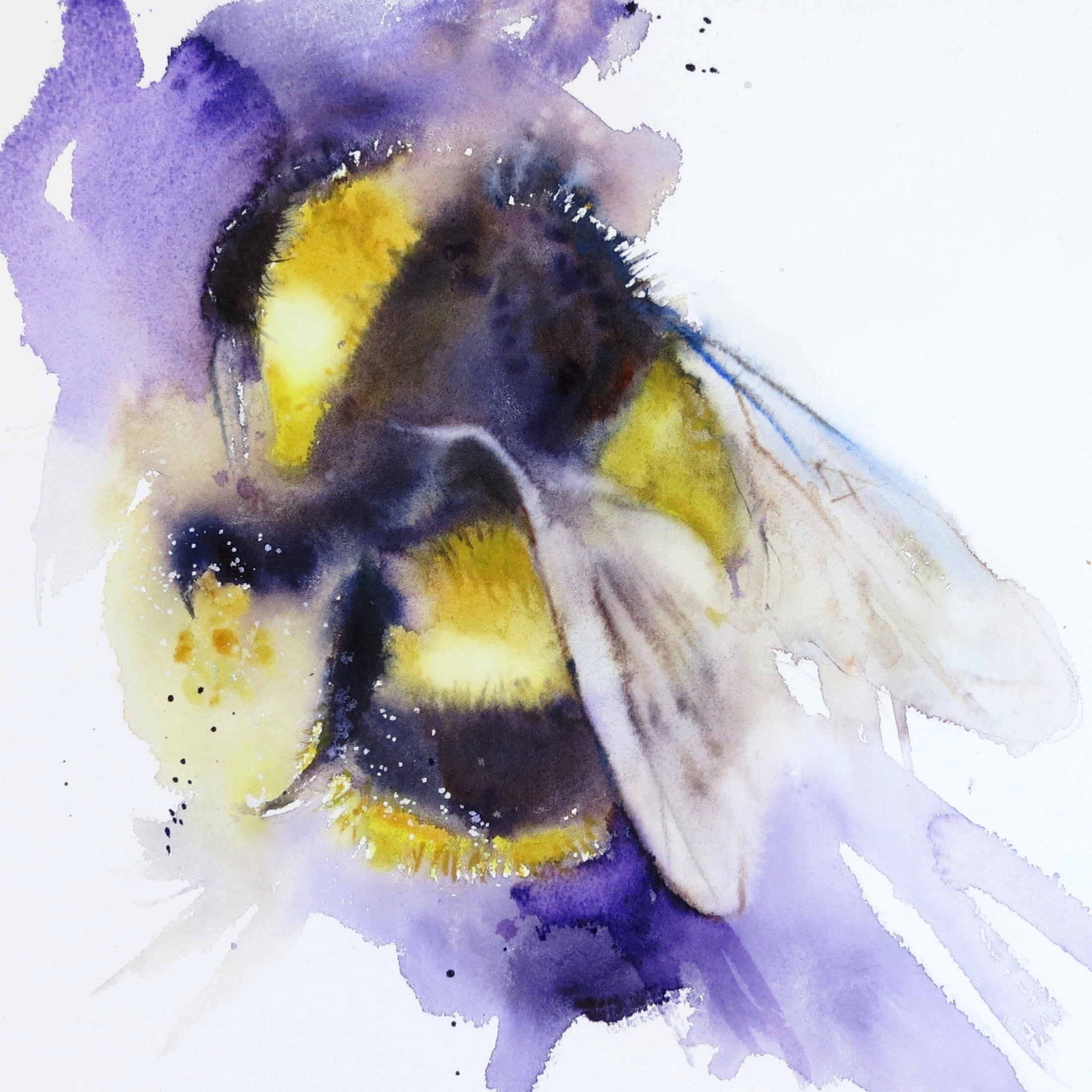 Bumble bees – online tuition