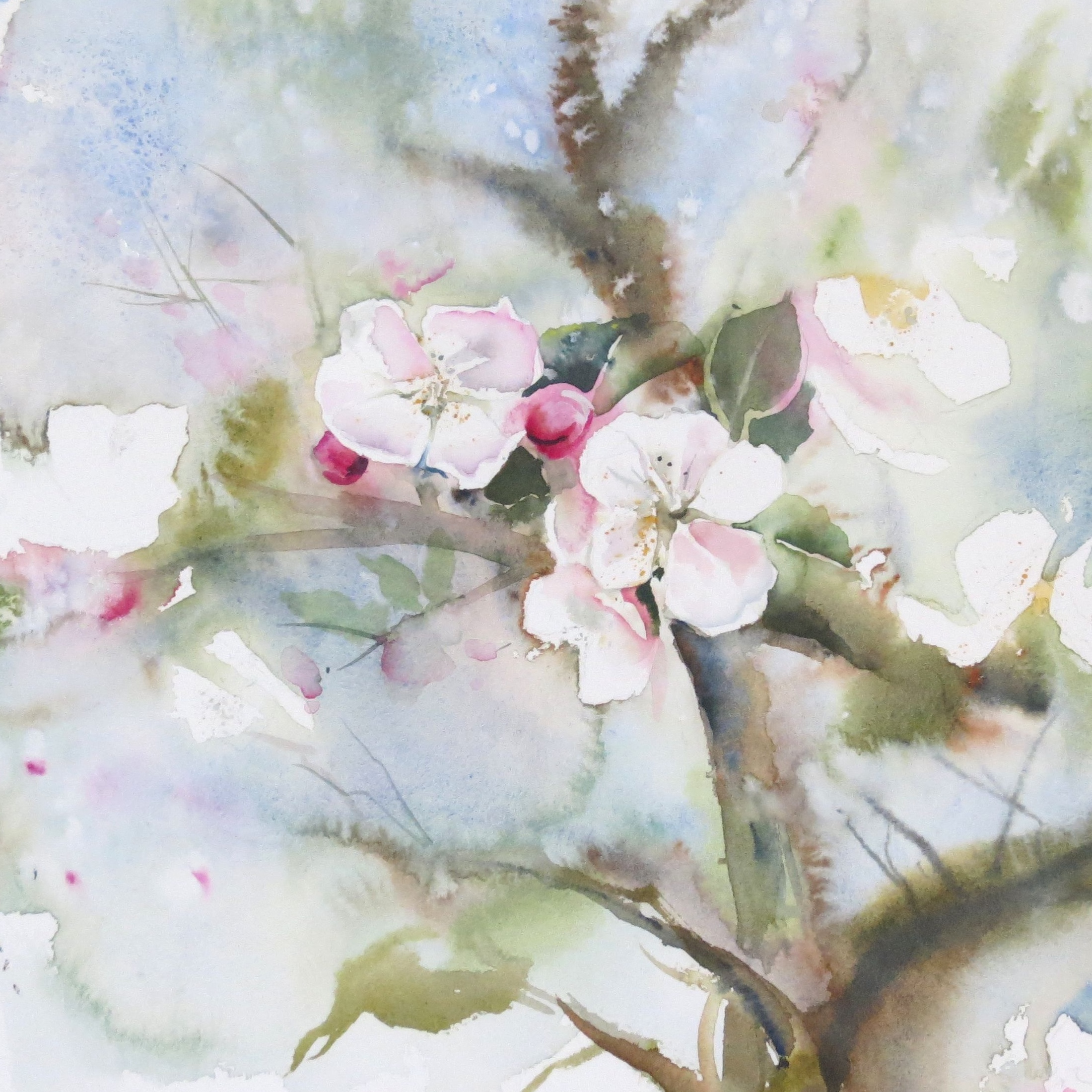 Magnolia and appleblossom – live workshop