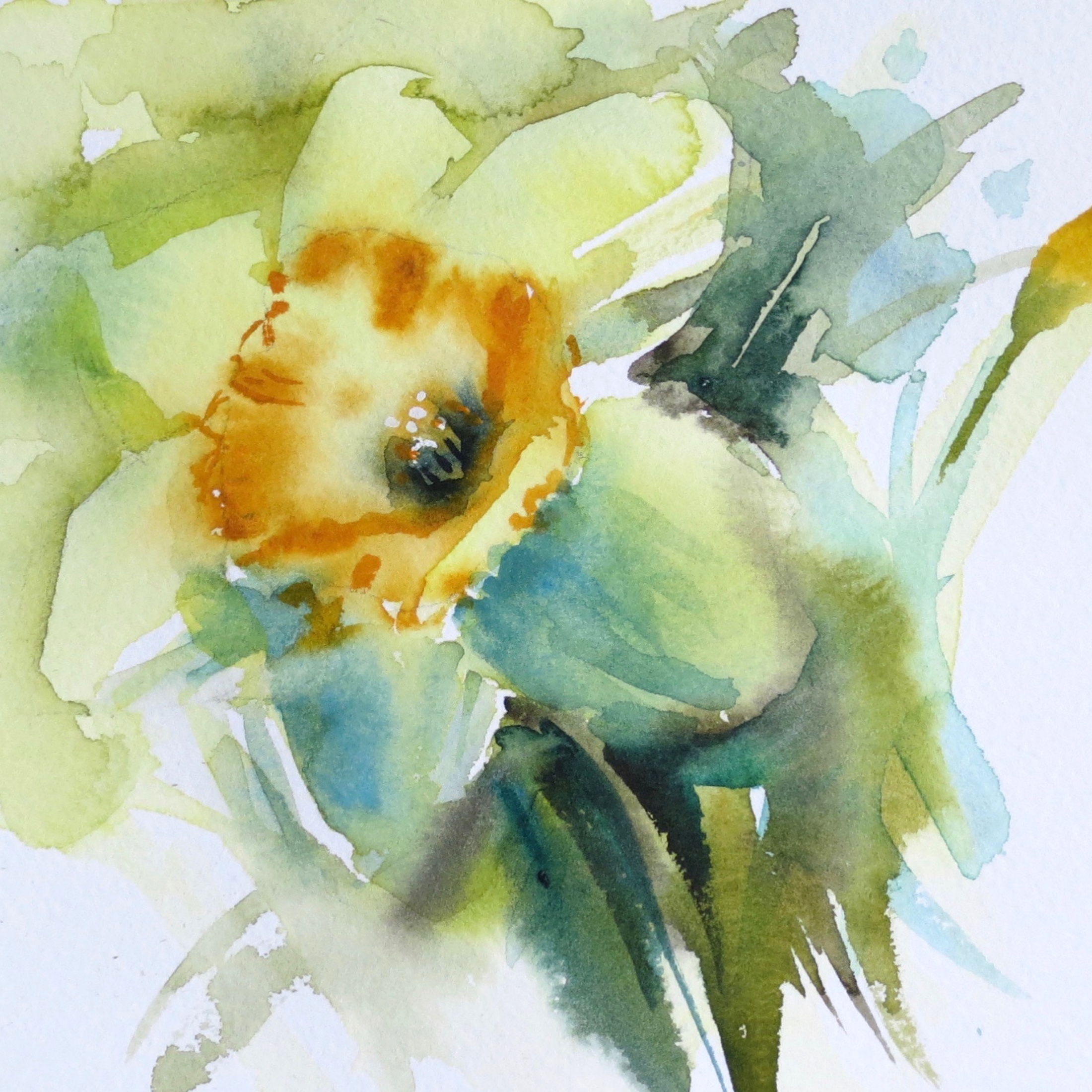 Daffodils – online tuition