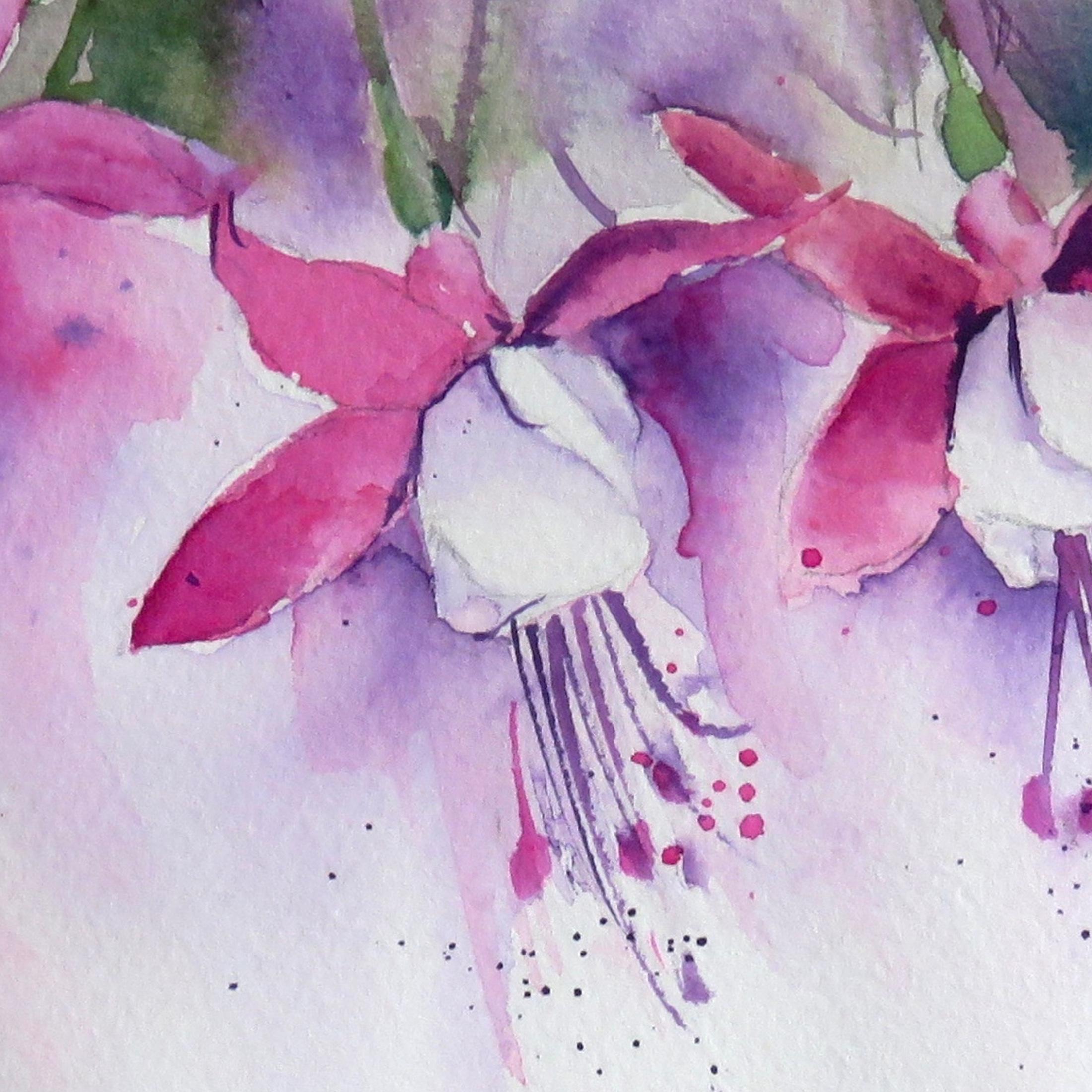 Fuchsia – online tuition (free)