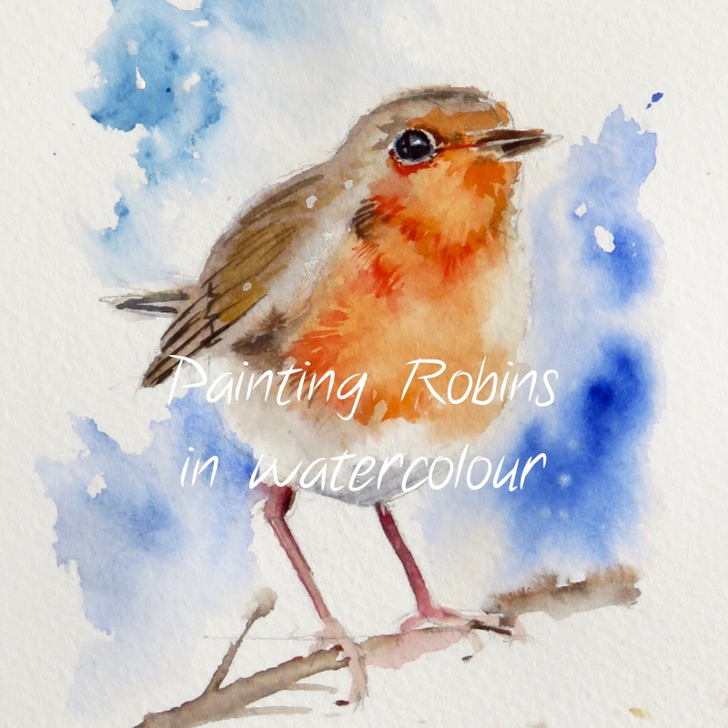 Robins – online tuition