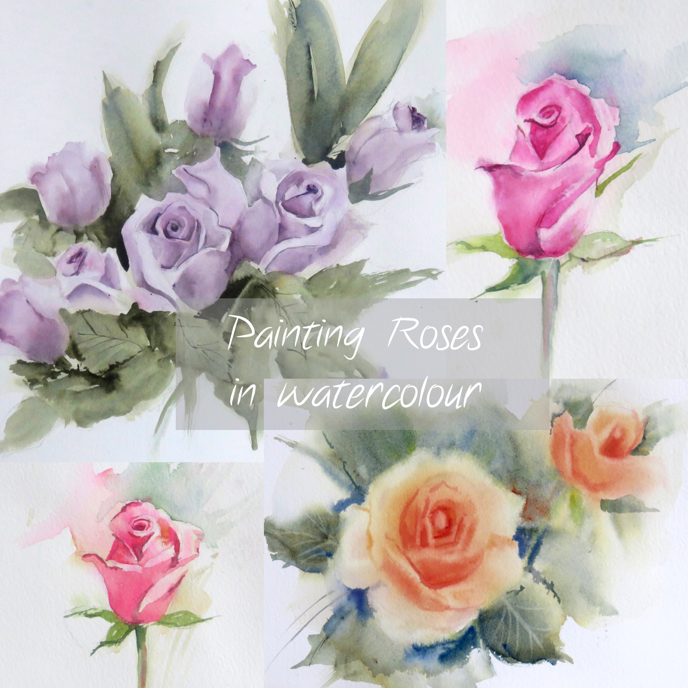Roses – Online Tuition