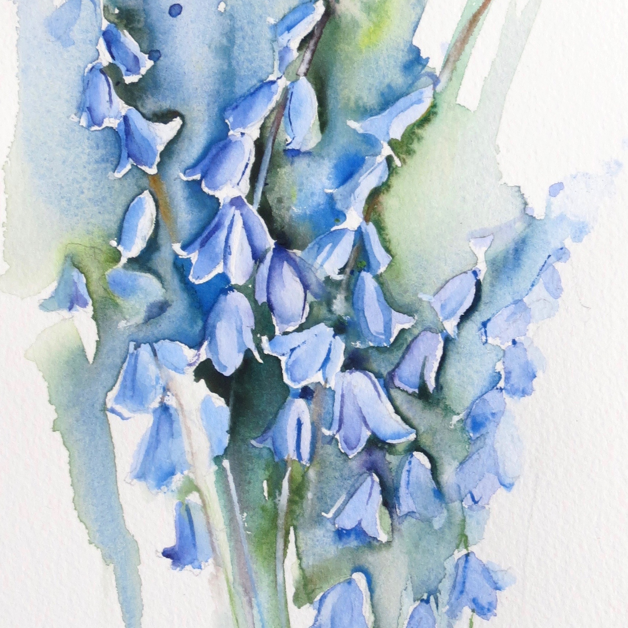 Primroses and bluebells – live workshop