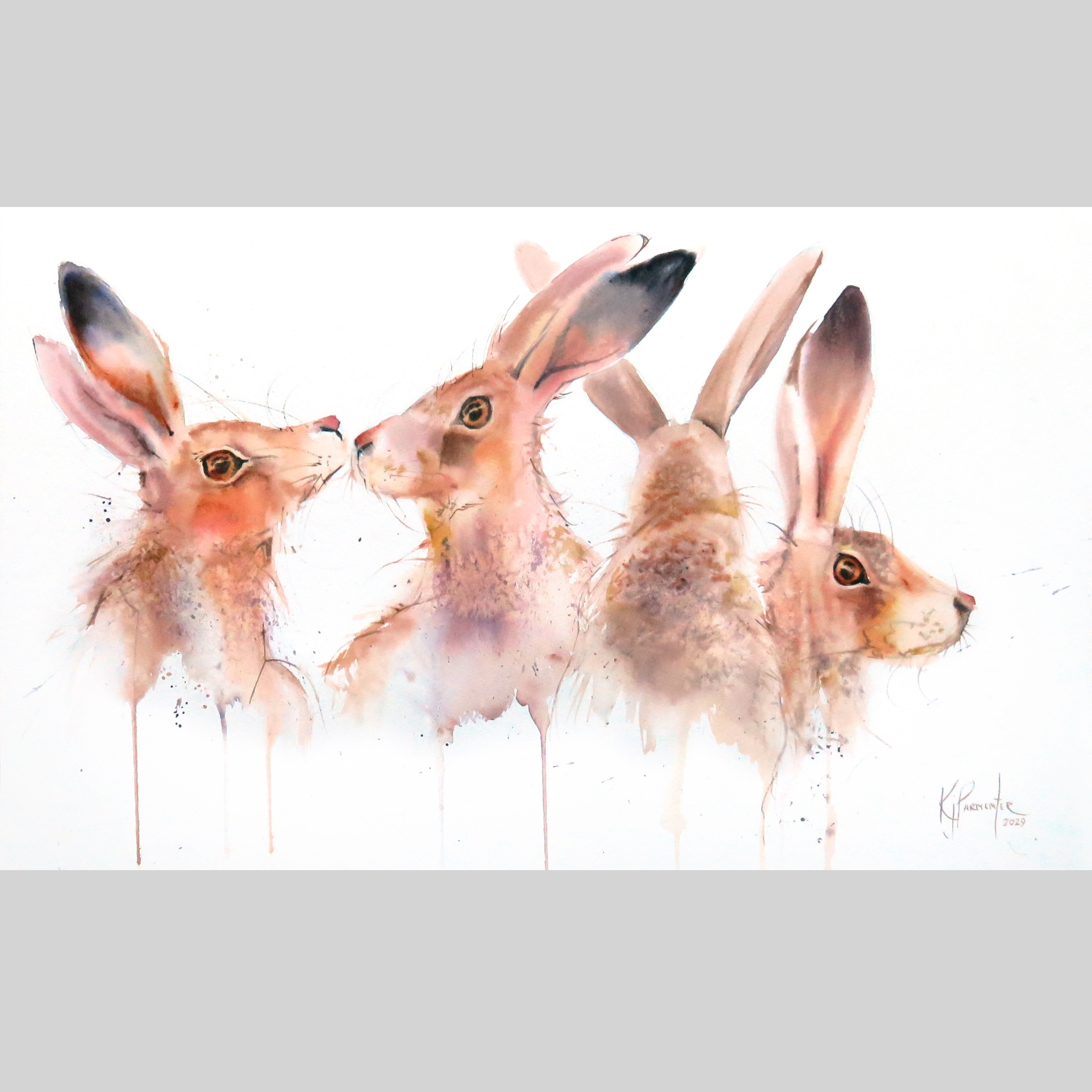 Hare Bunch