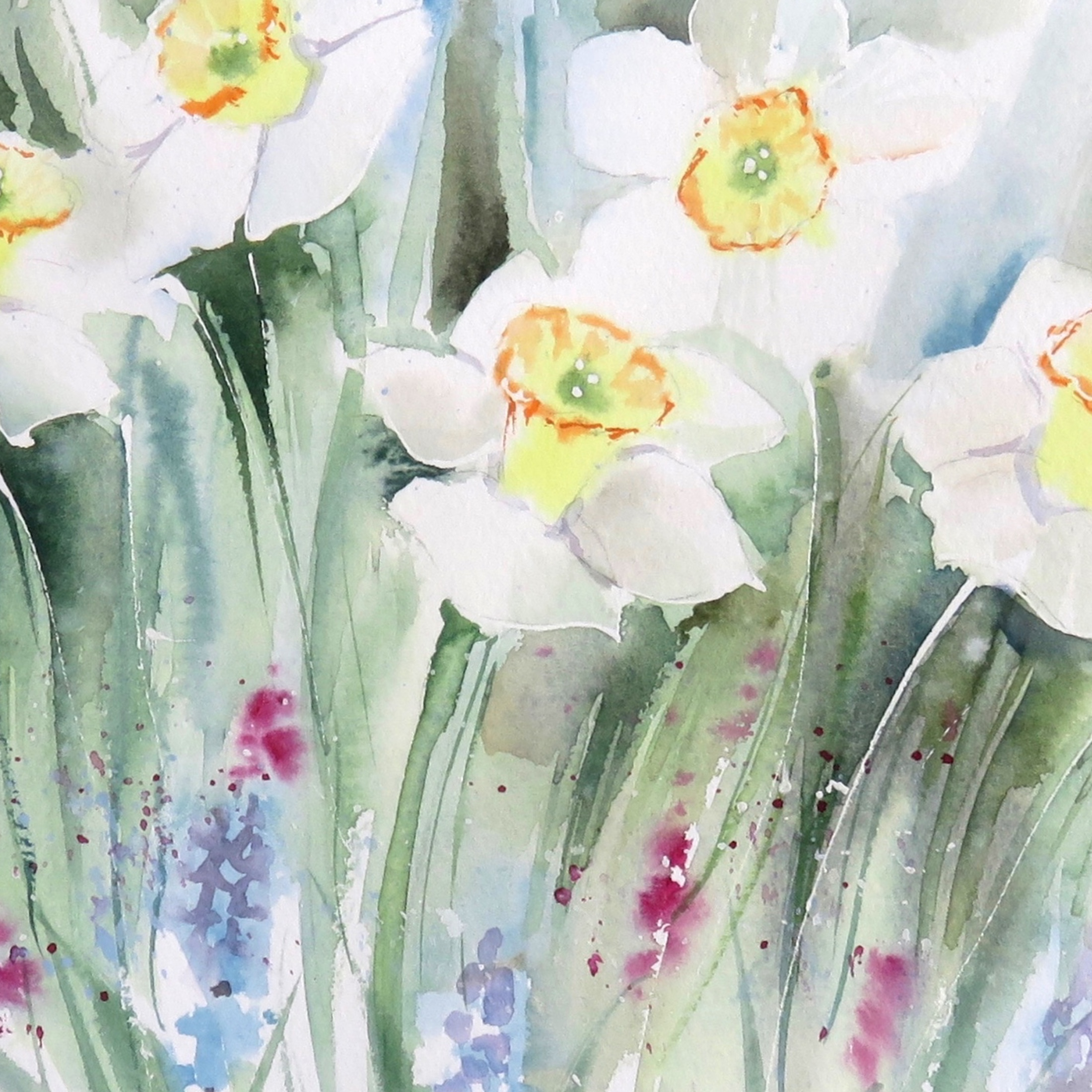 Daffodils – online tuition (free)
